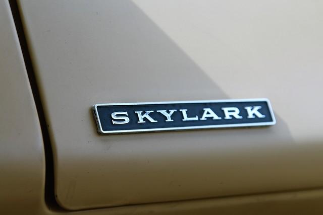 1964 Buick Skylark Sport Wagon Phoenix, AZ 29