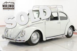 1965 Volkswagen BUG in Denver CO