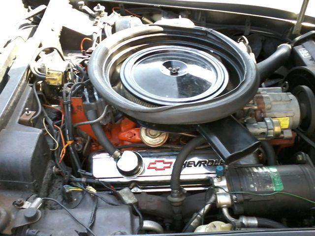 1973 Chevrolet Corvette Stingray 350 San Antonio, Texas 42