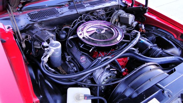 1974 Chevrolet CAMARO Z/28 UNRESTORED 31K ORIG MILES FULLY DOCUMENTED CAR Phoenix, Arizona 18