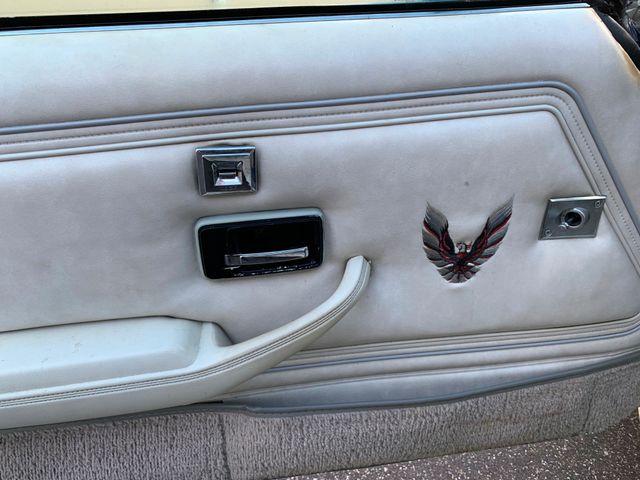 1980 Pontiac Firebird Trans Am Tampa, Florida 11