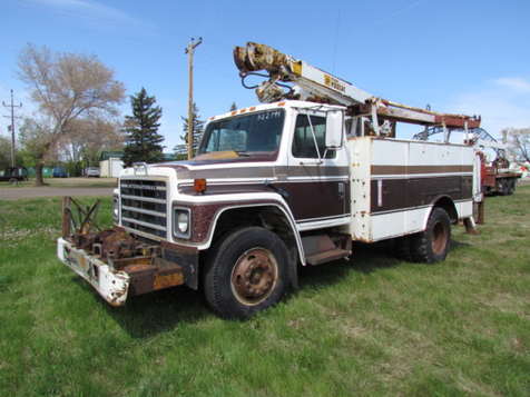 1981 International 1754  in Glendive, MT