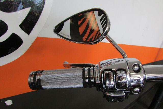 1995 Harley-Davidson SOFTAIL Heritage Arlington, Texas 26