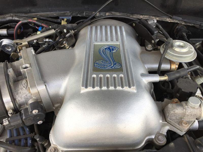1998 Ford Mustang SVT Cobra ONLY 31,688 MILES- NICE!!! in Rowlett, Texas