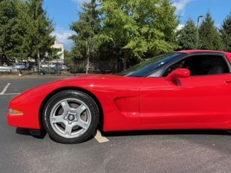 1999 *Sale Pending* Chevrolet Corvette Conshohocken, Pennsylvania 15