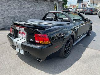 1999 Ford Mustang SVT Cobra  city Wisconsin  Millennium Motor Sales  in , Wisconsin