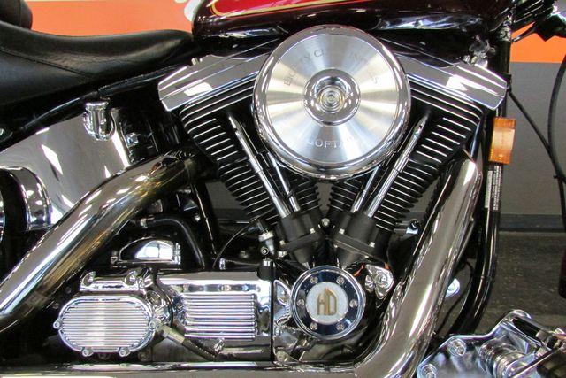 2001 Harley-Davidson SOFTAIL Arlington, Texas 19