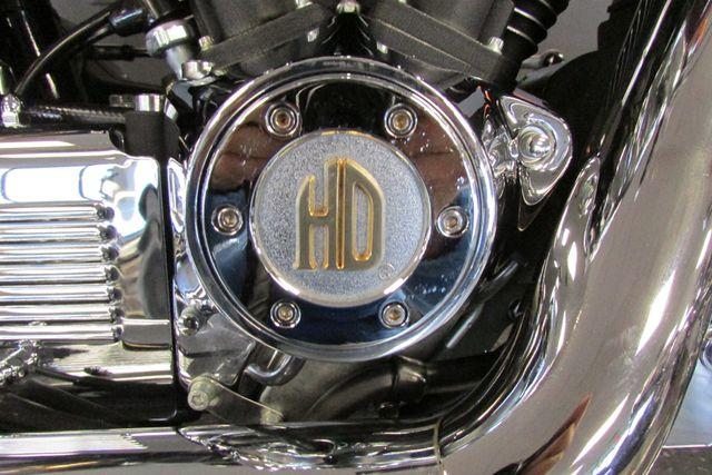 2001 Harley-Davidson SOFTAIL Arlington, Texas 20