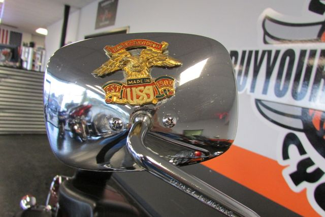 2001 Harley-Davidson SOFTAIL Arlington, Texas 9