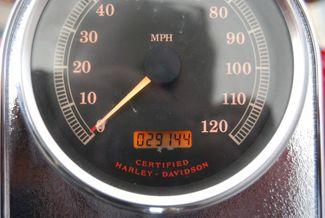 2002 Harley-Davidson FLSTC Heritage Softail Jackson, Georgia 17