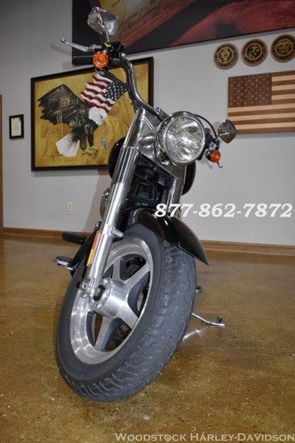 2002 Harley-Davidson SOFTAIL FAT BOY FLSTFI FAT BOY FLSTFI Chicago, Illinois 14