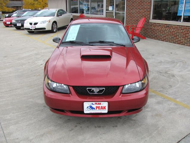 2004 Ford Mustang Standard in Medina, OHIO 44256