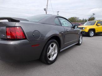 2004 Ford Mustang Standard Shelbyville, TN 11
