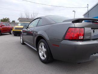 2004 Ford Mustang Standard Shelbyville, TN 3