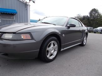 2004 Ford Mustang Standard Shelbyville, TN 5