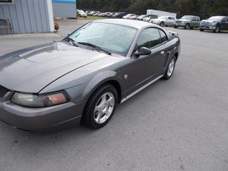 2004 Ford Mustang Standard Shelbyville, TN 6