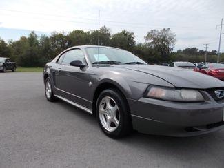 2004 Ford Mustang Standard Shelbyville, TN 8