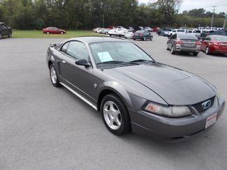 2004 Ford Mustang Standard Shelbyville, TN 9