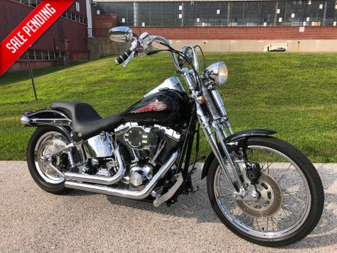 2004 Harley-Davidson FXSTSI Springer Softail in Oaks