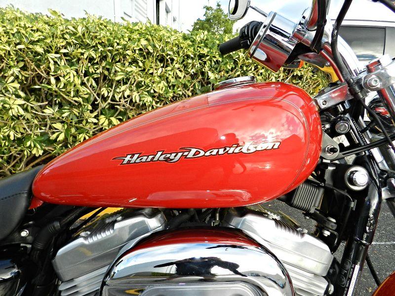 2004 Harley-Davidson Sportster XL883C Custom 883 Custom  EXTRAS 30 DAY WARRANTY  city Florida  MC Cycles  in Hollywood, Florida