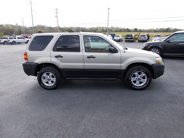 2005 Ford Escape XLT Shelbyville, TN 10