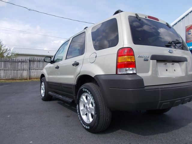2005 Ford Escape XLT Shelbyville, TN 3