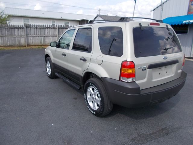 2005 Ford Escape XLT Shelbyville, TN 4