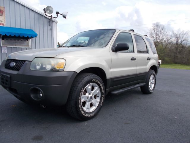 2005 Ford Escape XLT Shelbyville, TN 5