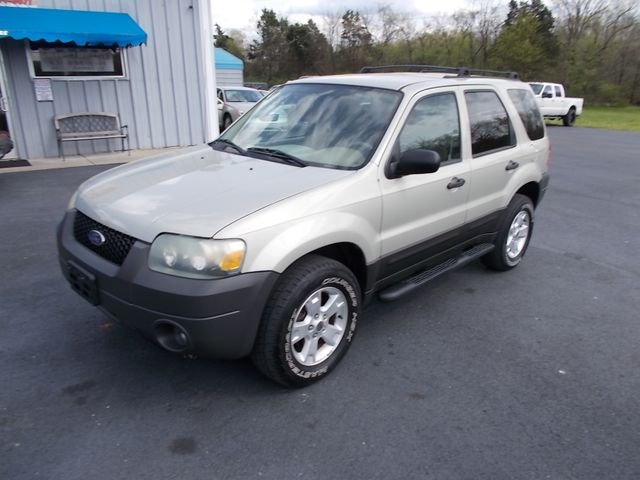 2005 Ford Escape XLT Shelbyville, TN 6