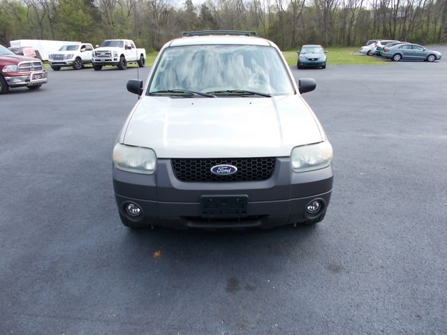 2005 Ford Escape XLT Shelbyville, TN 7