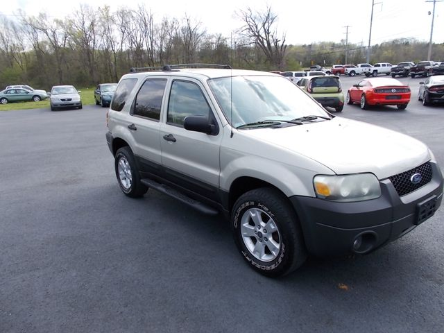 2005 Ford Escape XLT Shelbyville, TN 9