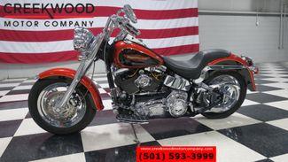 2005 Harley-Davidson Softail in Searcy, AR