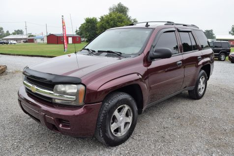 2006 Chevrolet TrailBlazer LS in Mt. Carmel, IL