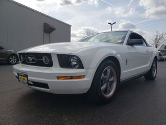 2006 Ford Mustang Standard   Champaign, Illinois   The Auto Mall of Champaign in Champaign Illinois