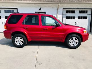 2007 Ford Escape Limited V6 2WD Imports and More Inc  in Lenoir City, TN