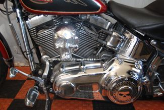 2007 Harley-Davidson Softail Custom FXSTC Jackson, Georgia 18