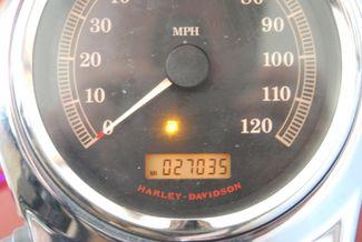 2007 Harley-Davidson Softail Custom FXSTC Jackson, Georgia 24