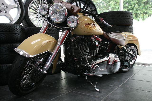 2008 Harley-Davidson FLSTN Custom Houston, Texas 4