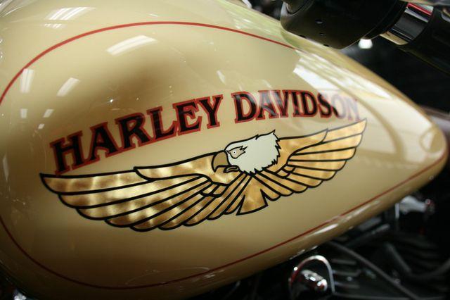 2008 Harley-Davidson FLSTN Custom Houston, Texas 16