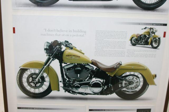 2008 Harley-Davidson FLSTN Custom Houston, Texas 19
