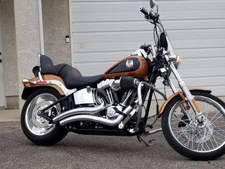 2008 Harley-Davidson Softail® Custom Pueblo West, CO