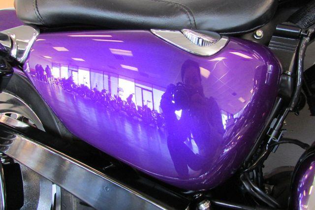 2008 Harley-Davidson Sportster® 1200 Custom Arlington, Texas 14