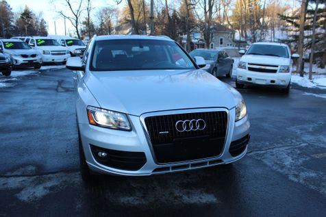2009 Audi Q5 Premium Plus in Shavertown