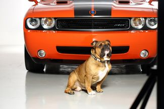 2009 Dodge Challenger SRT8* only 52k mi* Auto* EZ Finance** | Plano, TX | Carrick's Autos in Plano TX