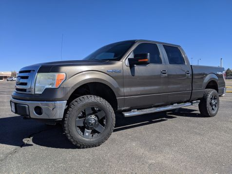 2009 Ford F-150 Supercrew XLT 4X4 in , Colorado