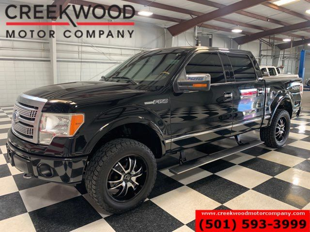 2009 Ford F-150 Platinum 4x4 Black 20s Leveled Leather Nav Sunroof in Searcy, AR 72143