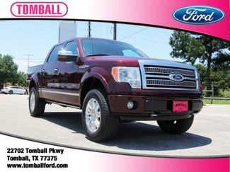 2009 Ford F-150 in Tomball, TX 77375