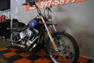 2009 Harley-Davidson Softail Custom FXSTC Jackson, Georgia 2