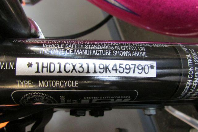 2009 Harley-Davidson Sportster® 1200 Low Arlington, Texas 19