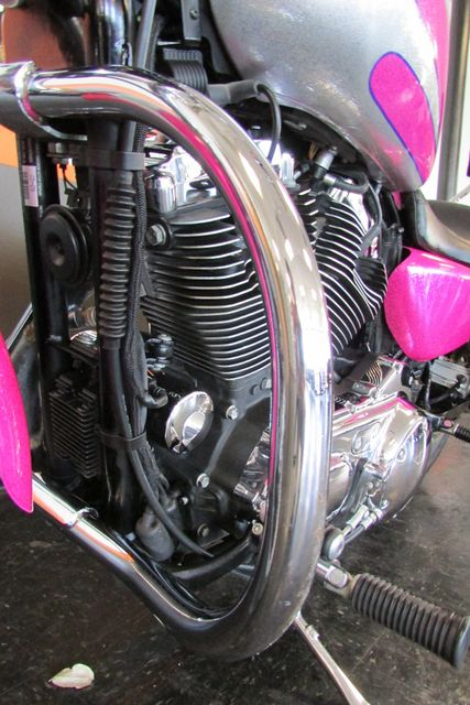 2009 Harley-Davidson Sportster® 1200 Low Arlington, Texas 40